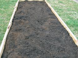 My First Raised Garden Bed