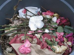 Recent Compost